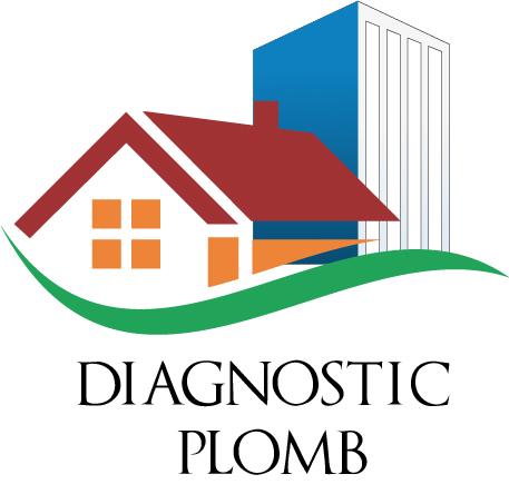 c1diag diagnostic plomb Lyon