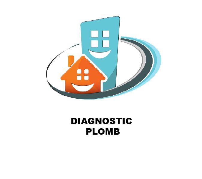 c1diag diagnostic plomb-2020